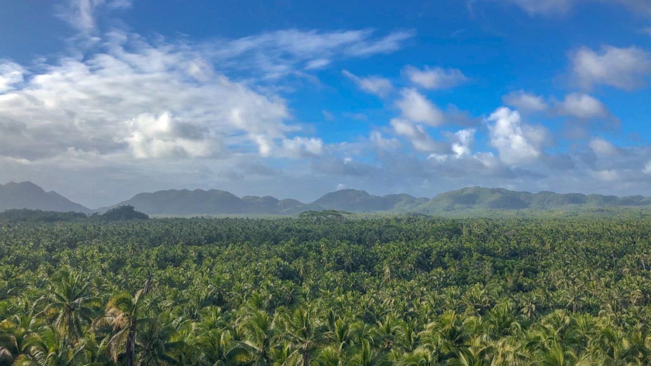 シャルガオ島6