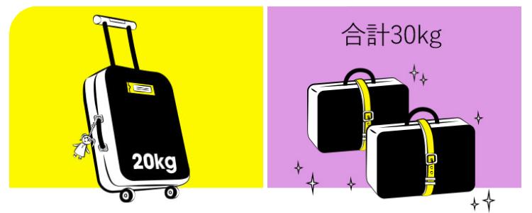 スクートの荷物2