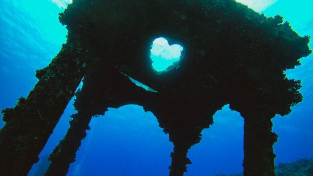 与論島ダイビング海中宮殿1